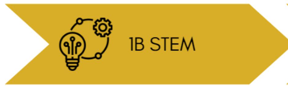 1B STEM