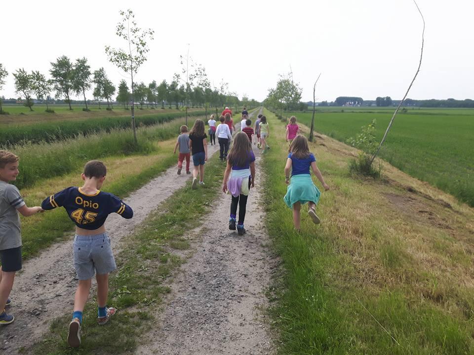 kinderen maken wandeling tijdens de plattelandsklassen