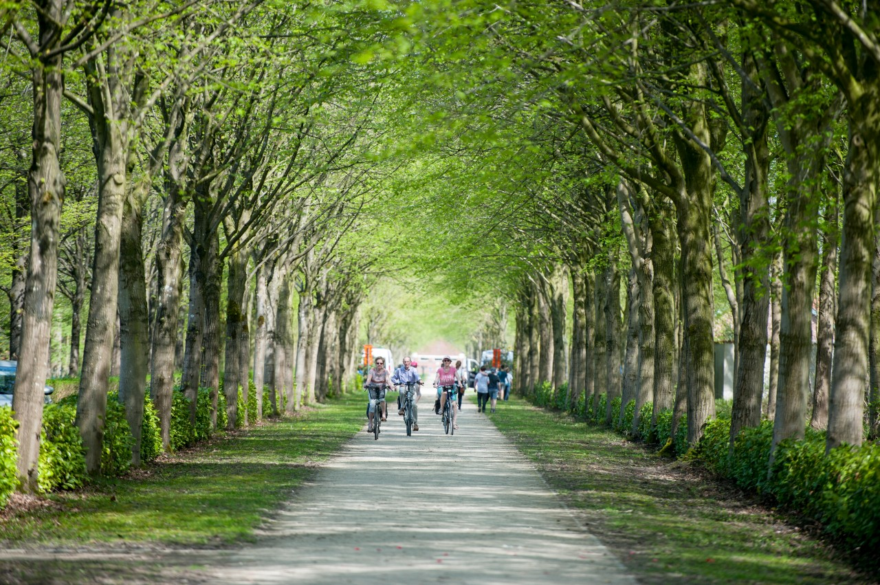 fietsen in het leen