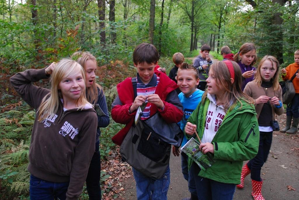 kinderen op bosklassen