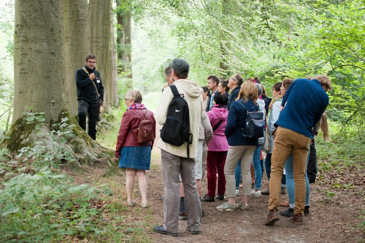 gids leidt groep doorheen het bos