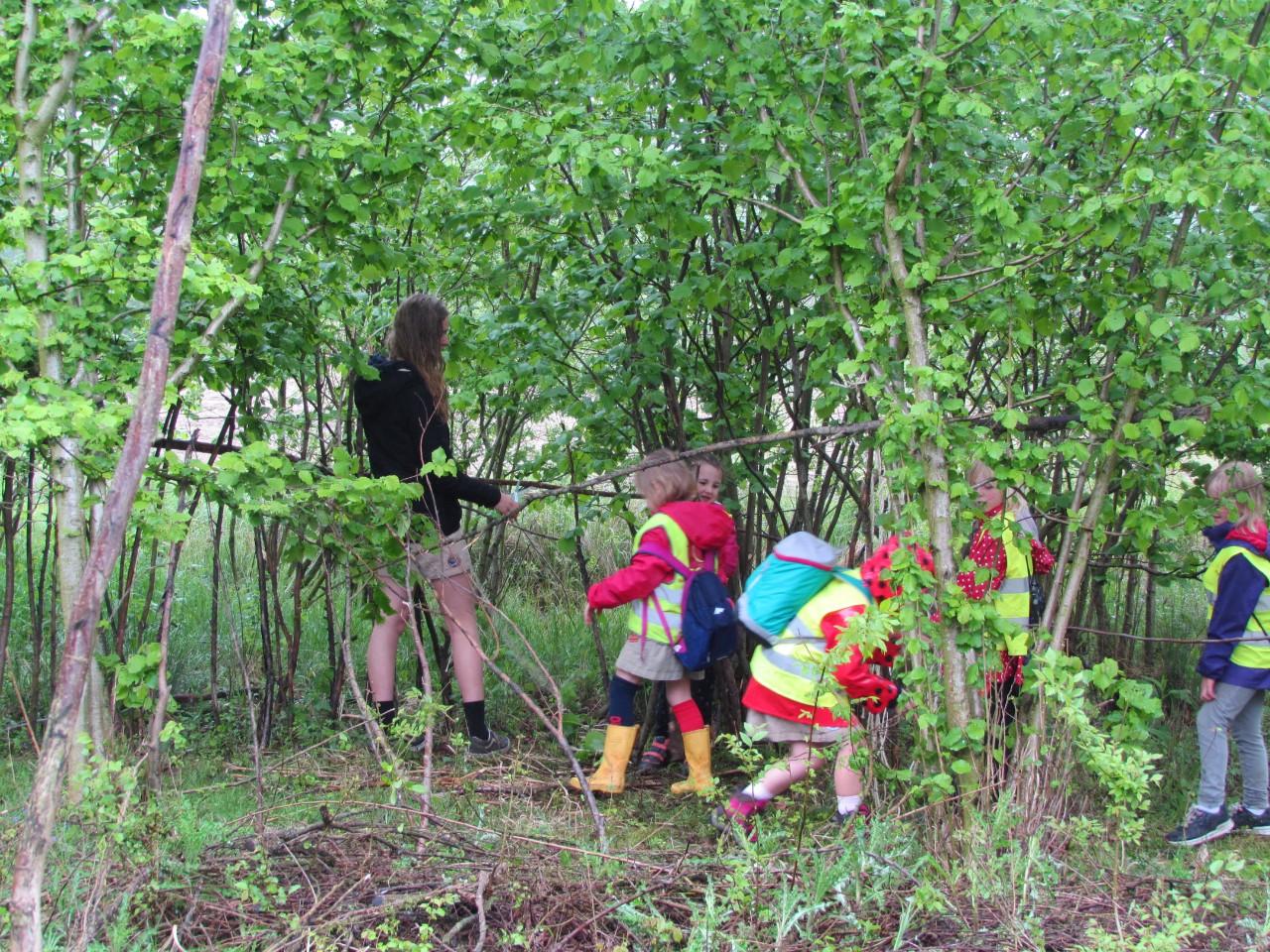 kleuters in het bos tijdens educatieve activiteit