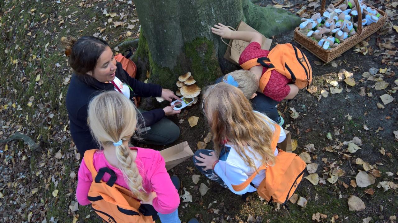 leerlingen tijdens activiteit met willy en familie het bos in