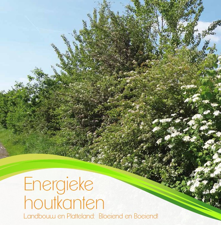 cover Brochure energieke houtkanten