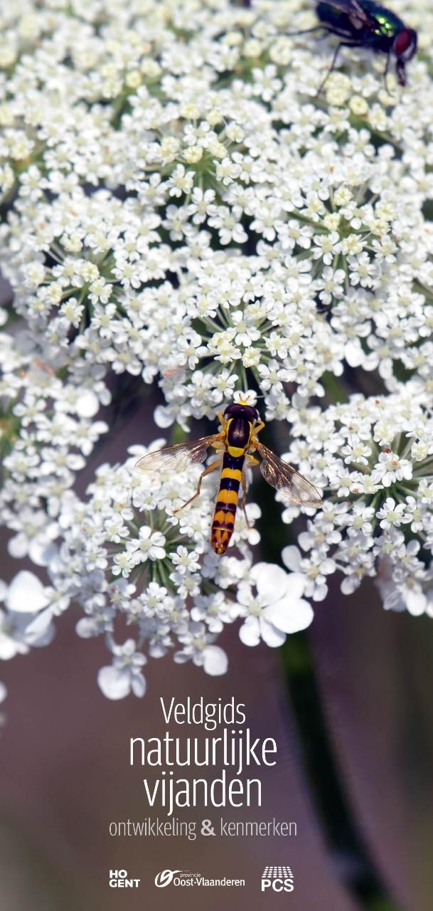 cover Brochure veldgids nuttige insecten en roofmijten