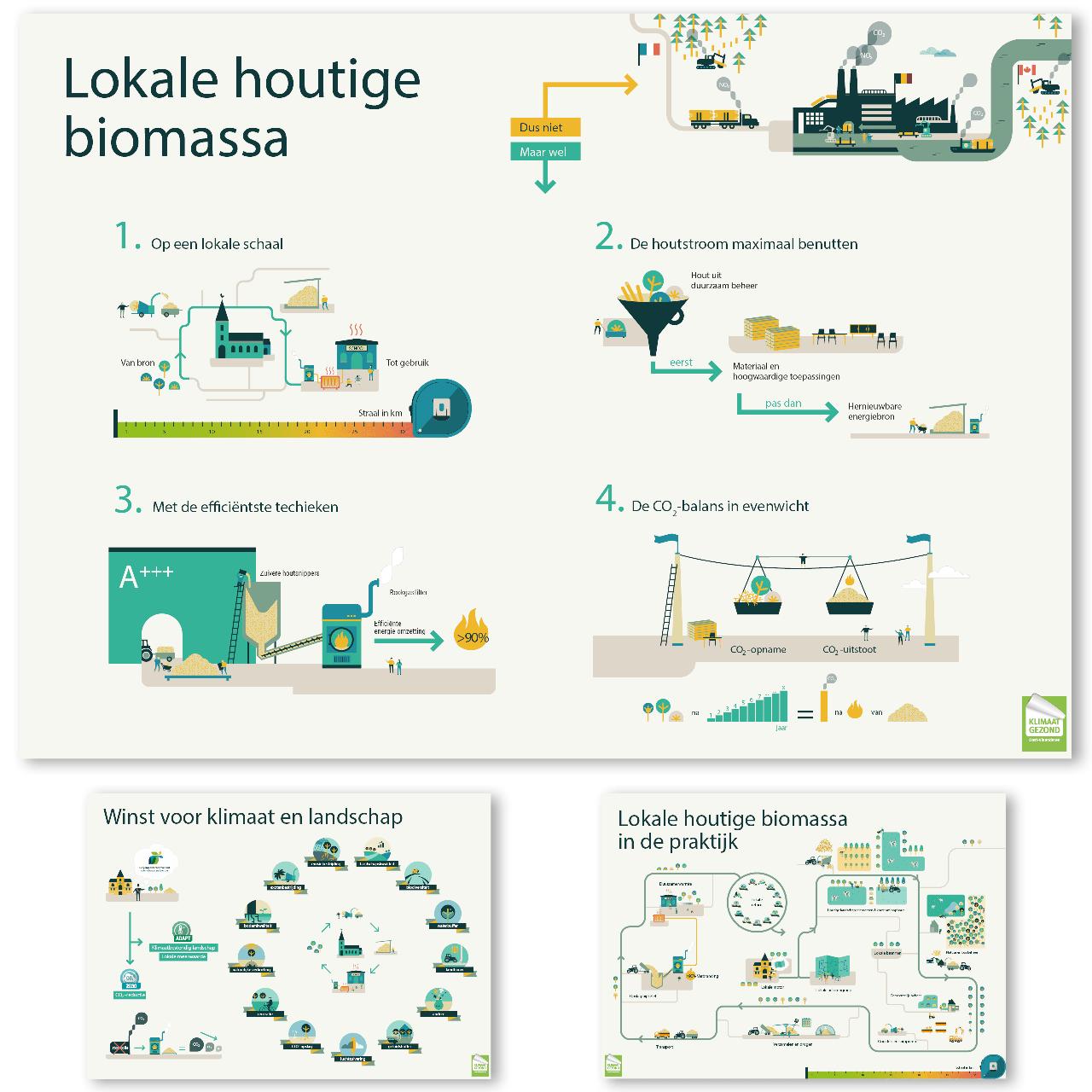infografiek houtige biomassa