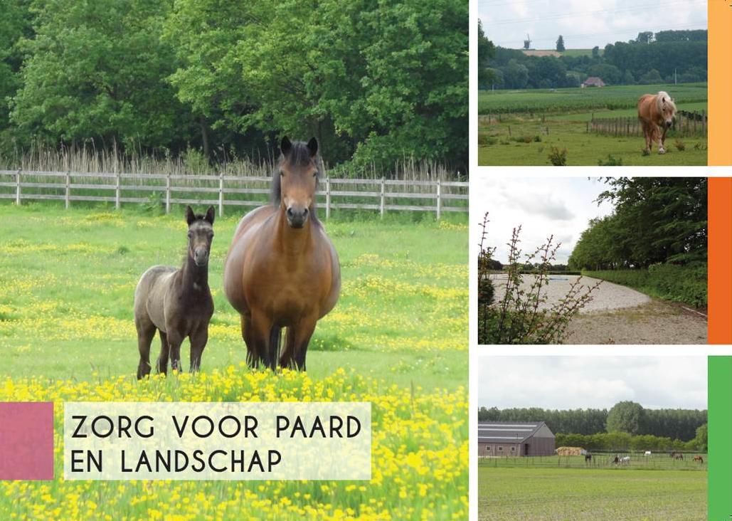 cover brochure zorg voor paard en landschap